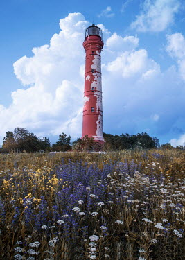 Jaroslaw Blaminsky Lighthouse and meadow