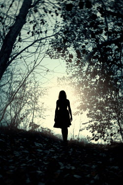Magdalena Russocka Silhouette of woman standing in forest
