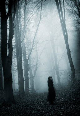 Carmen Spitznagel WOMAN STANDING IN FOGGY FOREST Women