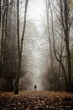 Esme Mai MAN STANDING ON COUNTRY PATH IN AUTUMN Men
