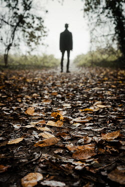 Esme Mai SILHOUETTED MAN ON COUNTRY PATH WITH TREES Men