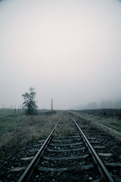 Carmen Spitznagel EMPTY RAILWAY TRACKS IN WINTRY COUNTRYSIDE Railways/Trains