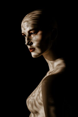 Esme Mai FEMALE MANNEQUIN COVERED WITH SHADOW PATTERNS Women