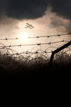 Lee Avison WARPLANES FLYING OVER FIELD WITH BARBED WIRE Miscellaneous Transport