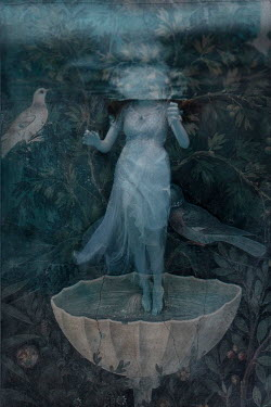 Erika Masterson WOMAN WITH BIRD UNDERWATER STANDING ON SHELL Women