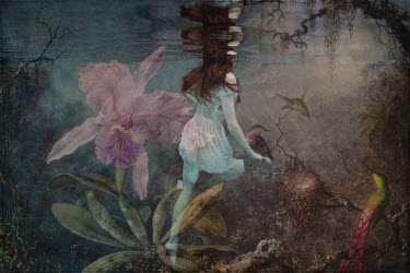 Erika Masterson TINY GIRL ON FLOWER UNDERWATER WITH BIRD Women
