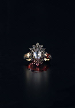 Lyn Randle ANTIQUE DIAMOND RING COVERED WITH BLOOD Miscellaneous Objects