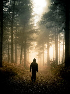 Trevor Payne HOODED MAN WALKING IN FOREST Men