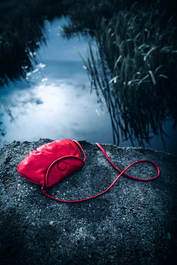 Natasza Fiedotjew abandoned red handbag over water