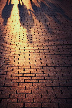 Natasza Fiedotjew shadows of people walking on cobbled pavement Groups/Crowds