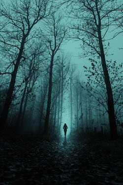 Magdalena Russocka silhouette of woman walking in misty forest
