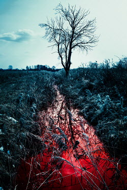 Magdalena Russocka bloody water in ditch in field