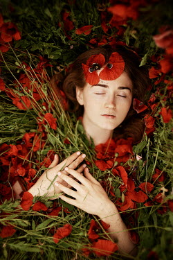 Alexandra Bochkareva WOMAN LYING WITH RED POPPIES Women