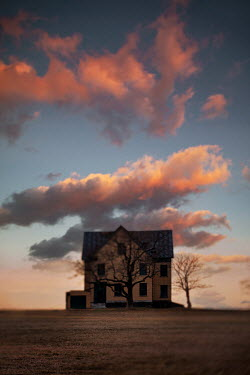 Lisa Bonowicz HOUSE AND WINTRY TREES AT SUNSET IN COUNTRYSIDE Houses