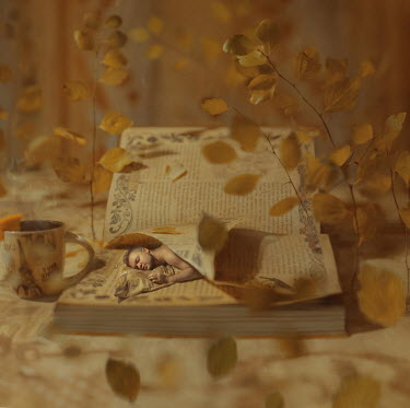 Svitozar Bilorusov MINIATURE MAN SLEEPING IN BOOK WITH LEAVES Men