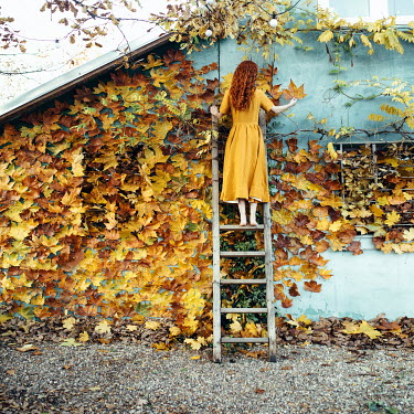 Jovana Rikalo WOMAN ON LADDER WITH AUTUMN LEAVES OUTDOORS Women