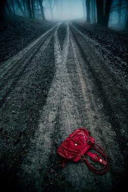 Carmen Spitznagel Discarded red handbag on forest road