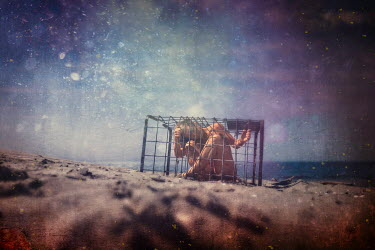 Kamil Vojnar Naked young woman in cage on beach
