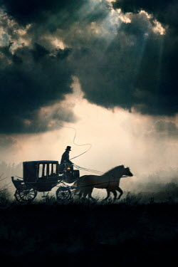 Lee Avison horse drawn carriage with coachman at night galloping in silhouette