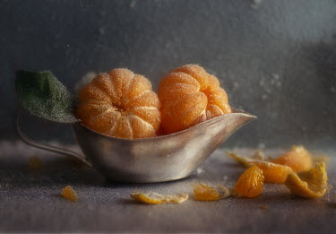 Andreeva Svoboda FROSTY CLEMENTINES IN SILVER JUG Miscellaneous Objects