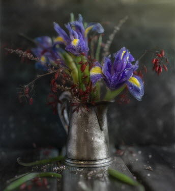 Andreeva Svoboda LUE AND RED FLOWERS IN SILVER JUG Flowers