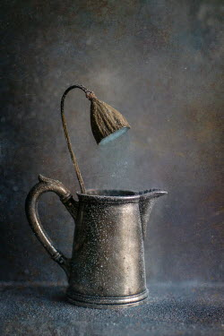 Andreeva Svoboda SILVER JUG WITH FROSTED DRIED PLANT Flowers