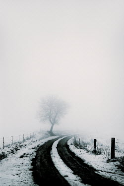 Carmen Spitznagel EMPTY COUNTRY ROAD IN SNOW AND FOG Snow/ Ice