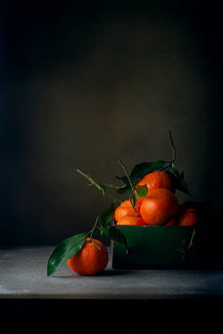 Galya Ivanova CLEMENTINES IN TIN ON TABLE IN SHADOW Miscellaneous Objects