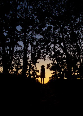 Terry Bidgood Silhouette of young woman standing under trees at sunset
