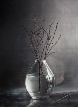 Andreeva Svoboda Sticks in vase