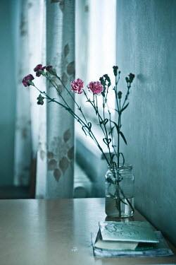 Andreeva Svoboda Pink flowers in vase