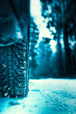 Magdalena Russocka CAR WHEEL IN SNOW WITH TREES