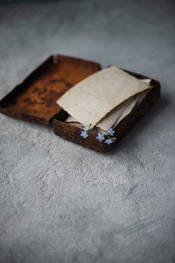 Galya Ivanova FORGET-ME-NOTS AND POSTCARDS IN OLD TIN BOX Miscellaneous Objects