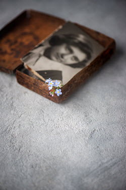 Galya Ivanova FORGET-ME-NOTS AND PHOTOGRAPH IN OLD TIN BOX Miscellaneous Objects