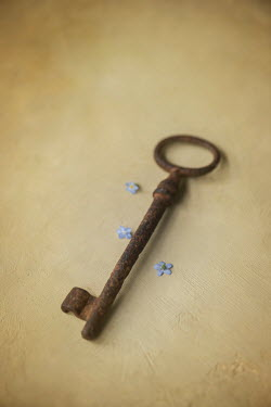 Galya Ivanova FORGET-ME-NOTS AND OLD RUSTY KEY Miscellaneous Objects