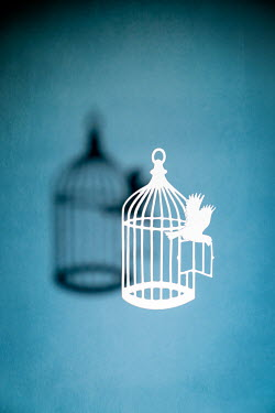 Peter Chadwick WHITE CUT-OUT BIRD ESCAPING FROM CAGE WITH SHADOW Miscellaneous Objects