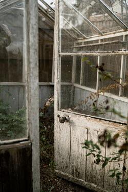 Angela Ward-Brown Open door to greenhouse