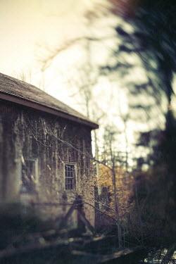 Lisa Bonowicz Weathered house and trees 8