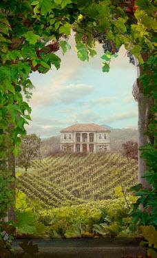 Drunaa Villa in vineyard