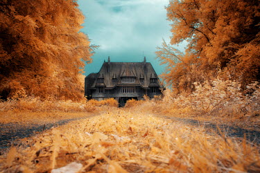 David Keochkerian OLD HOUSE WITH AUTUMN TREES AND DRIVEWAY Houses