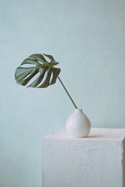 Andreeva Svoboda Leaf in vase