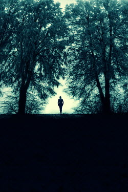 Magdalena Russocka silhouette of modern woman standing by trees