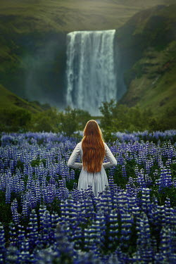 Terrence Drysdale WOMAN IN MEADOW OF BLUE FLOWERS WATCHING WATERFALL Women