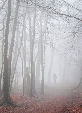 Trevor Payne MAN ON PATH IN FOGGY WINTRY FOREST Men