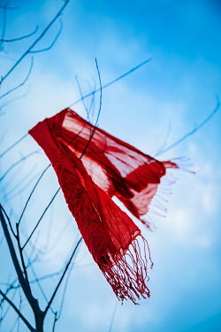 Natasza Fiedotjew red shawl blowing in wind on bare tree branch