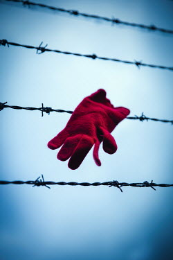 Natasza Fiedotjew Red woolen glove hanging on barbed wire