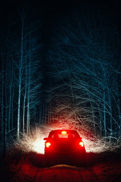 Natasza Fiedotjew car on road in woods at night