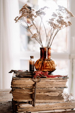 Magdalena Wasiczek VASE OF FLOWERS ON BOOKS WITH KEYS Miscellaneous Objects