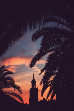 Magdalena Wasiczek SILHOUETTED TOWER WITH PALM TREES AT SUNSET Miscellaneous Buildings