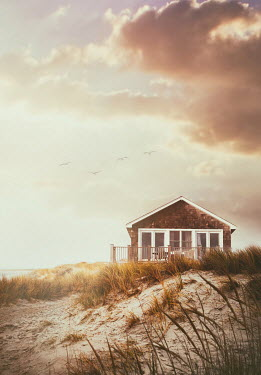 Sandra Cunningham SMALL HOUSE IN SAND DUNES IN SUMMER Houses